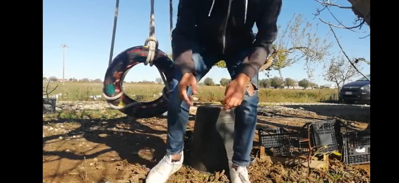 """La terra dei sogni infranti: il """"fallimento"""" di Boer il contadino è il nostro…"""