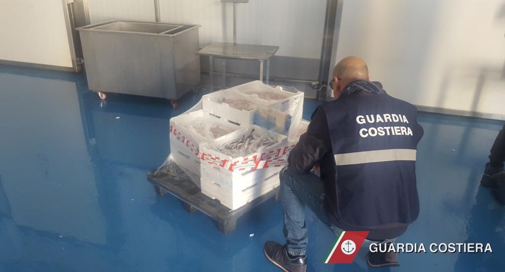Guardia costiera: operazione di contrasto alla vendita abusiva della schiuma di mare